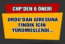 CHP'nin  Fındık İçin 6 Maddelik Çözüm Paketi