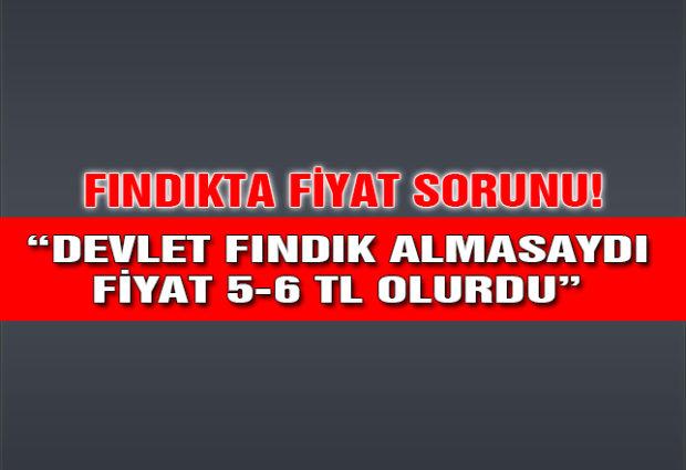 Devlet Fındık Almasaydı Fiyat 5-6 TL Olurdu!